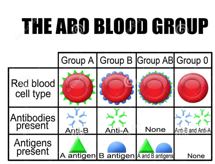 blood_types